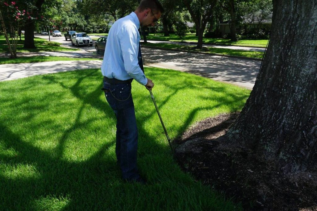Arborist Consultations-Boca Raton Tree Trimming and Tree Removal Services-We Offer Tree Trimming Services, Tree Removal, Tree Pruning, Tree Cutting, Residential and Commercial Tree Trimming Services, Storm Damage, Emergency Tree Removal, Land Clearing, Tree Companies, Tree Care Service, Stump Grinding, and we're the Best Tree Trimming Company Near You Guaranteed!