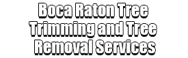 Boca Raton Tree Trimming and Tree Removal Services Logo-We Offer Tree Trimming Services, Tree Removal, Tree Pruning, Tree Cutting, Residential and Commercial Tree Trimming Services, Storm Damage, Emergency Tree Removal, Land Clearing, Tree Companies, Tree Care Service, Stump Grinding, and we're the Best Tree Trimming Company Near You Guaranteed!