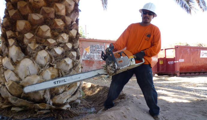 Palm Tree Trimming & Palm Tree Removal-Boca Raton Tree Trimming and Tree Removal Services-We Offer Tree Trimming Services, Tree Removal, Tree Pruning, Tree Cutting, Residential and Commercial Tree Trimming Services, Storm Damage, Emergency Tree Removal, Land Clearing, Tree Companies, Tree Care Service, Stump Grinding, and we're the Best Tree Trimming Company Near You Guaranteed!