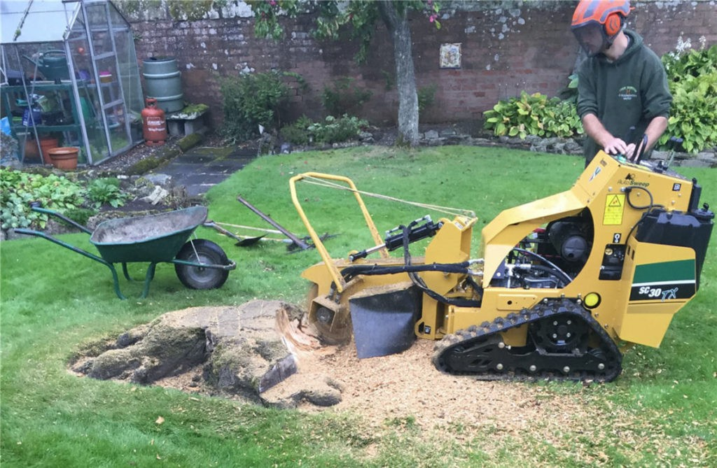 Stump Grinding-Boca Raton Tree Trimming and Tree Removal Services-We Offer Tree Trimming Services, Tree Removal, Tree Pruning, Tree Cutting, Residential and Commercial Tree Trimming Services, Storm Damage, Emergency Tree Removal, Land Clearing, Tree Companies, Tree Care Service, Stump Grinding, and we're the Best Tree Trimming Company Near You Guaranteed!