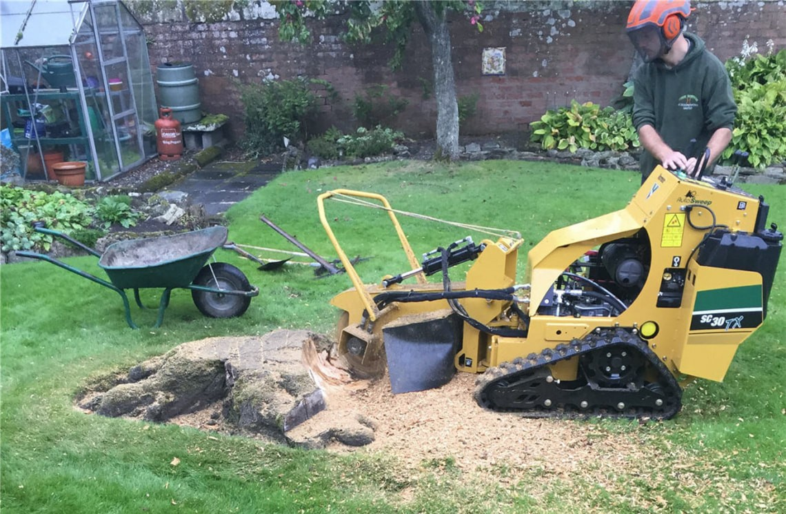 Stump Grinding & Removal-Boca Raton Tree Trimming and Tree Removal Services-We Offer Tree Trimming Services, Tree Removal, Tree Pruning, Tree Cutting, Residential and Commercial Tree Trimming Services, Storm Damage, Emergency Tree Removal, Land Clearing, Tree Companies, Tree Care Service, Stump Grinding, and we're the Best Tree Trimming Company Near You Guaranteed!